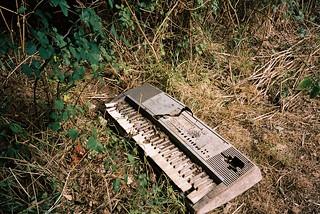 Keyboard | by knautia