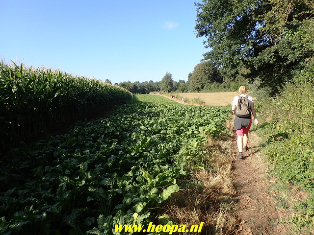 2018-08-10         2e dag          Heuvelland       31 Km  (33)