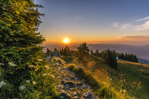 ursulaberg tree sunrise idyllic treetop sunset scenics horizon over land landscape sky uršlja gora slovenia karavanke karawanken plešivec