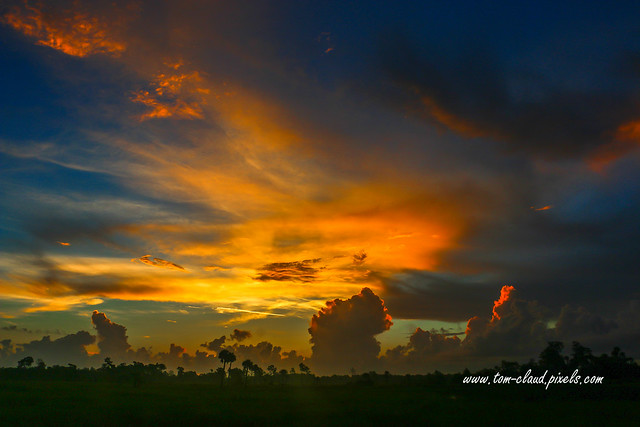 Orange and Blue Marsh Sunrise