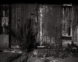 Urban Decay   by * Daniel *