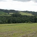 Hügelige Landschaft in der Nähe der Ruhrlandklinik - hier liegt der Eingang zum NSG Oefer Tal