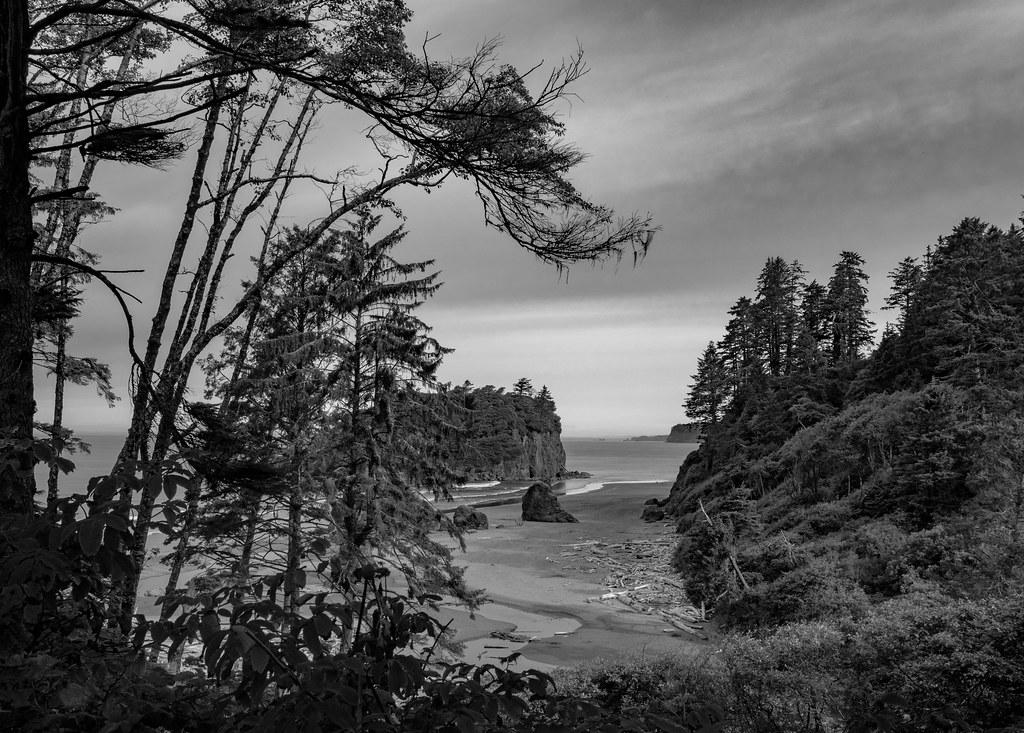 Ruby Beach Trail-1