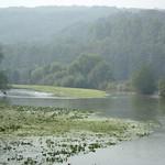 Ruhrhochwasser im Morgendunst in der Heisinger Ruhraue