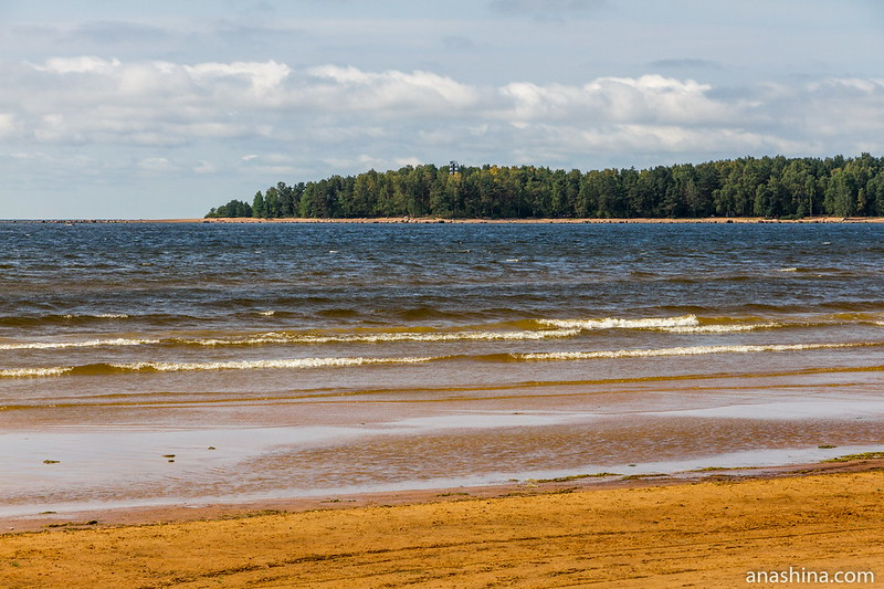 Бухта Желтая и мыс Кюрённиеми, Финский залив