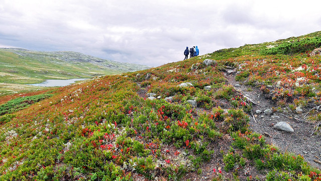 Experiencing Hardangervidda