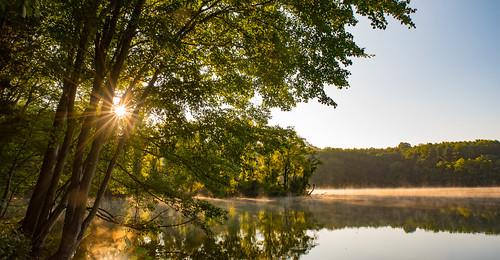 maryland libertyreservoir libertylake nature morning dawn forest lake fog mist sunrise nikon d750 tamron trees sunstar