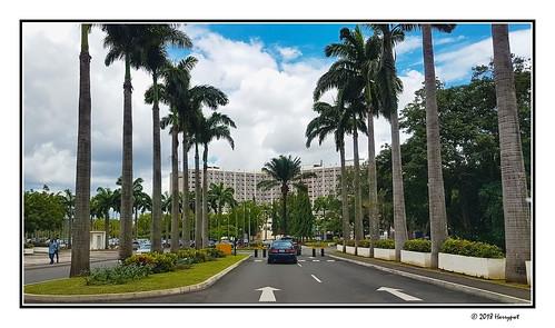 harrypwt borders framed city landscape cityscape palm trees abuja nigeria street hotel hilton transcorp capital samsungs7 s7 africa