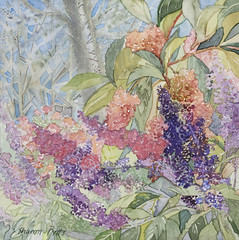 Watercolor Intensive by Sharon Pitts
