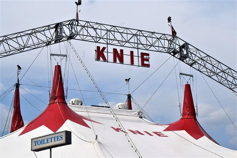 Circus Knie 06.08 (12)