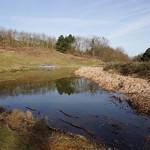 Im östlichen Teil der Schurenbachhalde liegt ein Gewässer