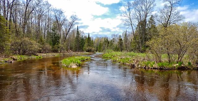 Northern Michigan River