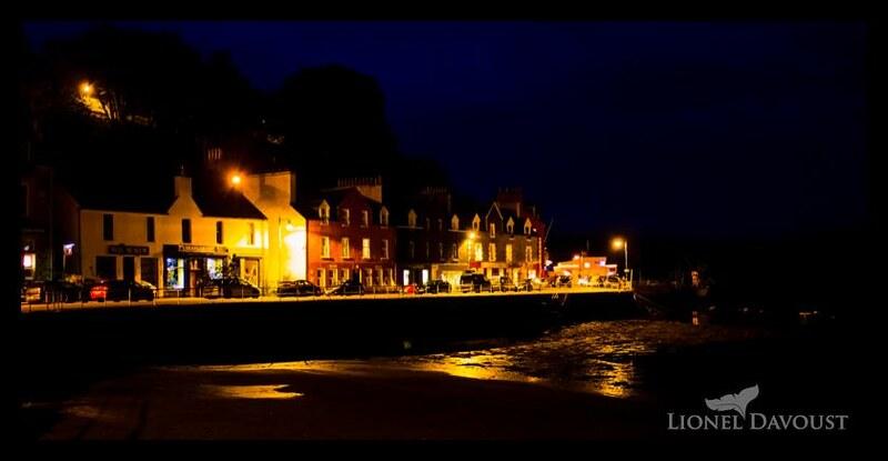 Tobermory harbor by night