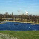 Winterlicher Sonnentag in der Walsumer Rheinaue, im Hintergrund ist das damals noch aktive Kraftwerk Voerde zu sehen