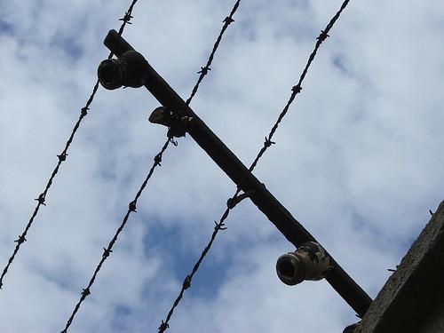 Mauthausen reticolati