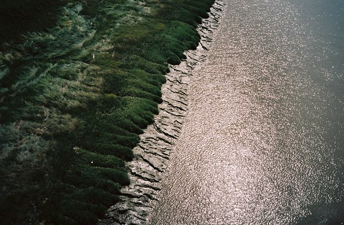 The edge of the Avon | by knautia