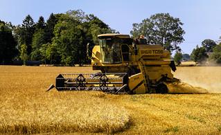 Harvestation | by Fredrik_Johnsson