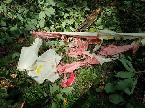 Tree Eats Kite - Lasts Flight