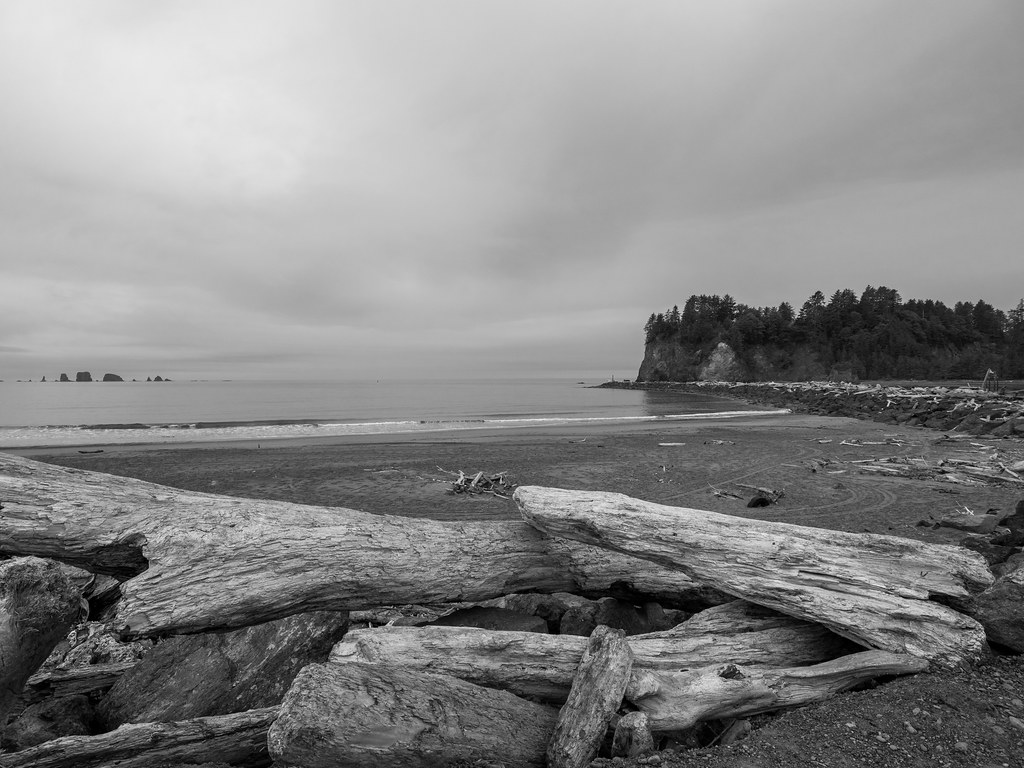 Quileute and Rialto Beach-1