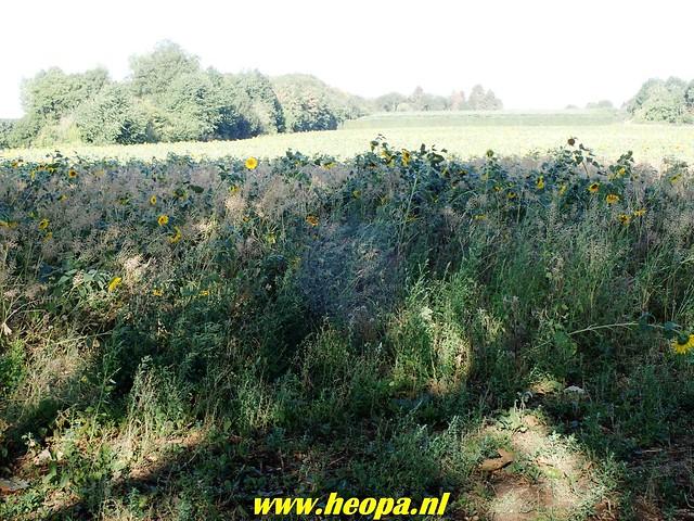 2018-08-10         2e dag          Heuvelland       31 Km  (40)