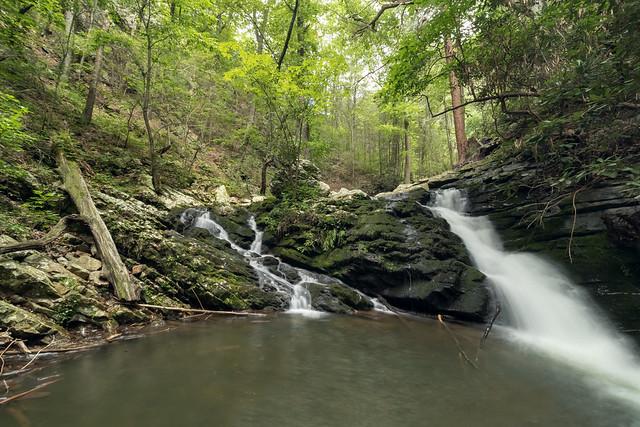 Gee Creek, South Cherokee NF & WMA, Polk County, Tennessee 1