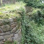 Mauerruine der Isenburg in Essen