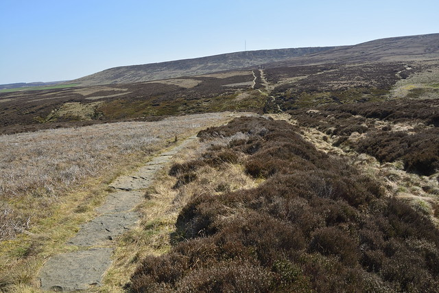 Black Hill to Wessenden Head (561)