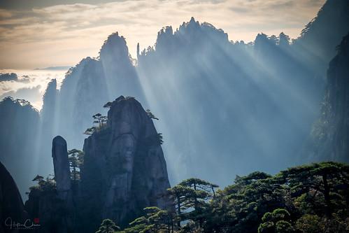 autumn goddessofmercypillar huangshannationalpark dwarfpines summer sunrise anhuiprovince seaofclouds granitepeaks china yellowmountains huangshancity anhui cn