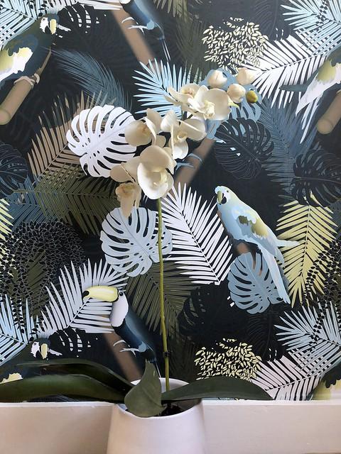Tropical_Toucan_Wallpaper_HomeDecor1