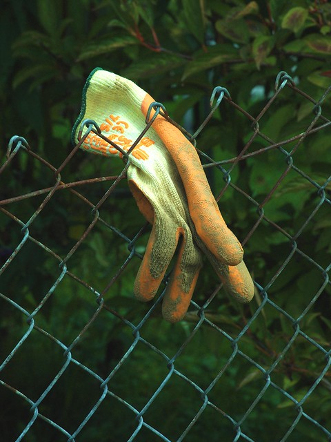 The One Glove