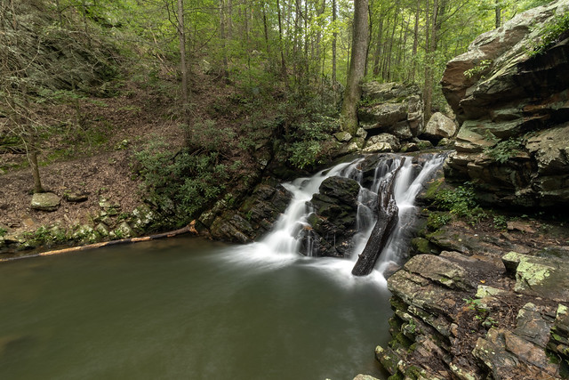 Gee Creek, South Cherokee NF & WMA, Polk County, Tennessee 2