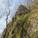 Mit Moos und niedriger Vegetation bewachsene Felswand