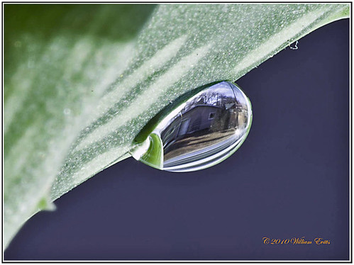 macro canon water drop view tiny small image