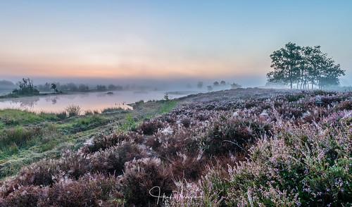 hatertsevennen nedeland netherlands buiten fog mist outdoor landschap landscape sunrise heide water vennen lucht sky heither heather
