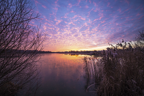 canon canon6d sunrise dramaticsky sky clouds colour reeds water reflection lake uk cambridgeshire outdoors nature