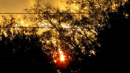 sanantoniotx sunrise amanacer sol soleil sunrisephotography outdoorphotography 日出