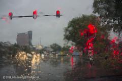 Rainy traffic lights