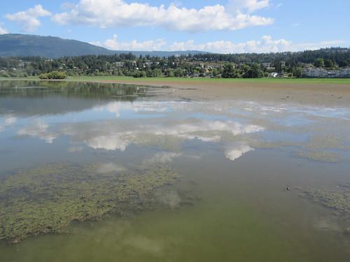salmon arm shuswap bc british columbia canada clouds reflection