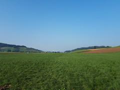 Eidg. Hornusserfest Walkringen