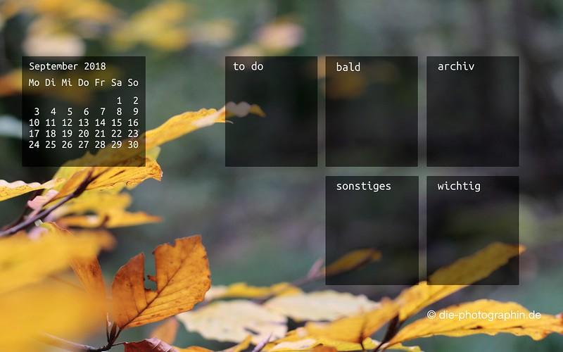 092018-gelbesLaub-organizedDesktop-wallpaperliebe-diephotographin