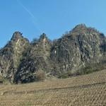 Südseite des Drachenfelses mit Weinberg
