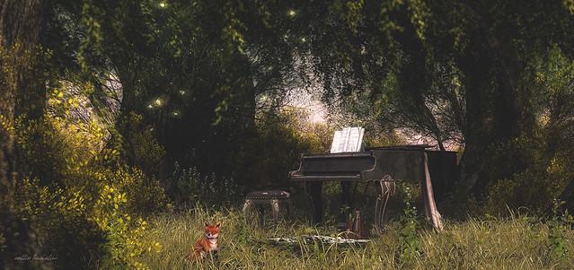 forgotten sonata