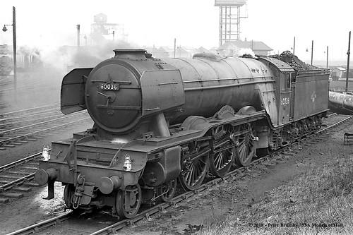 britishrailways gresley lner a3 462 60036 colombo steam darlington 51a mpd countydurham train railway locomotive railroad