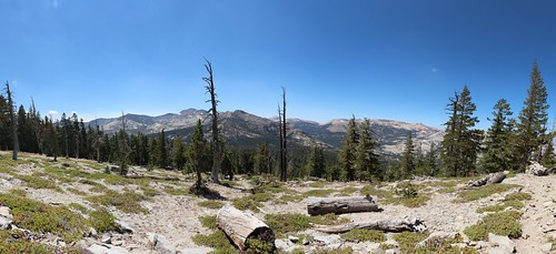 1057 The Tahoe-Yosemite Trail breaks out of the forest and provides stunning views along Phipps Peak | by _JFR_