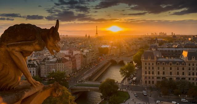 Chimère - Notre Dame de Paris - Sunset