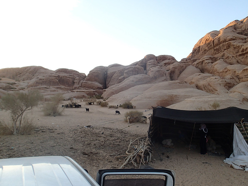 26 - A desert camp of Bedouin