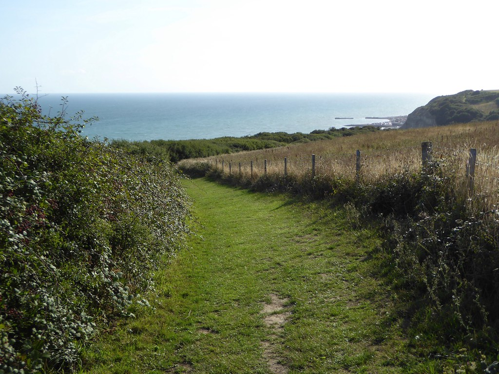 On the cliffs Hastings to Winchelsea via Three Oaks walk