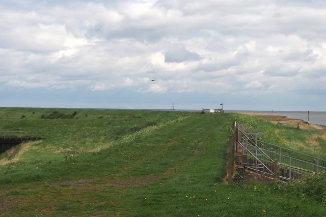 Footpath on the sea bank near Gedney Drove End