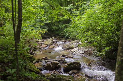 saluda north carolina the south blue ridge mountains pacolet river water stream hike hiking outdoor landscape woods forest