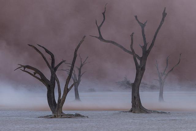 Deadvlei during a sandstorm